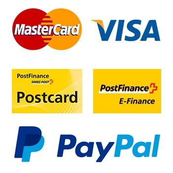 postfinance-paypal_master-visa_zahlungsmittel
